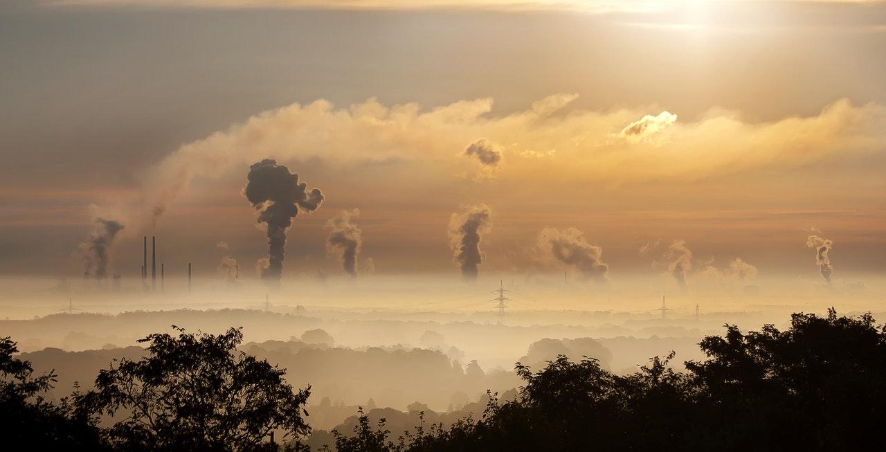 Supporting Temwa's Carbon Balancing Programme